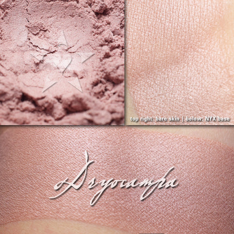 SYNCHLORA - multipurpose/highlighter/eyeshadow