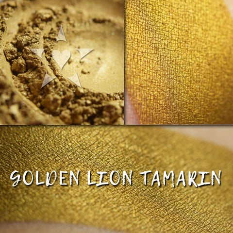 GOLDEN LION TAMARIN - EYESHADOW