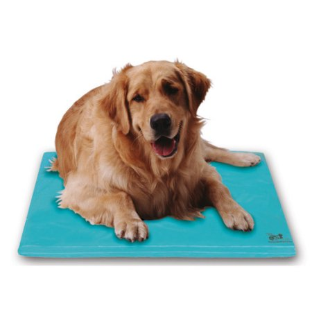Canine Cooler Thermoregulating Bed