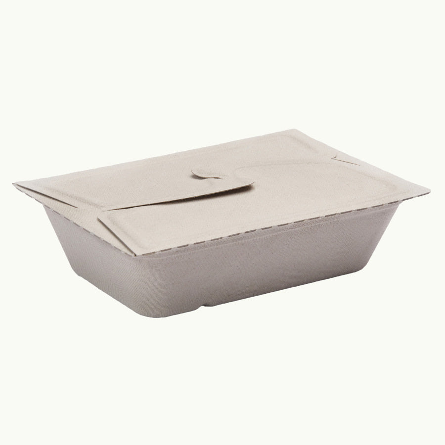 Sugarcane Folding Food Box