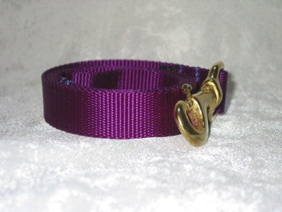Dog Leashes for all dogs > Everyday Usage Webbing Style