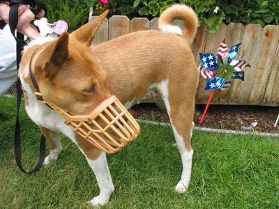 Basket and Kennel Muzzles