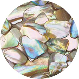 Shell Jewel - Nude (MB)