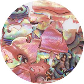 Natural Beach Shell - Pink Marble (NZ02)