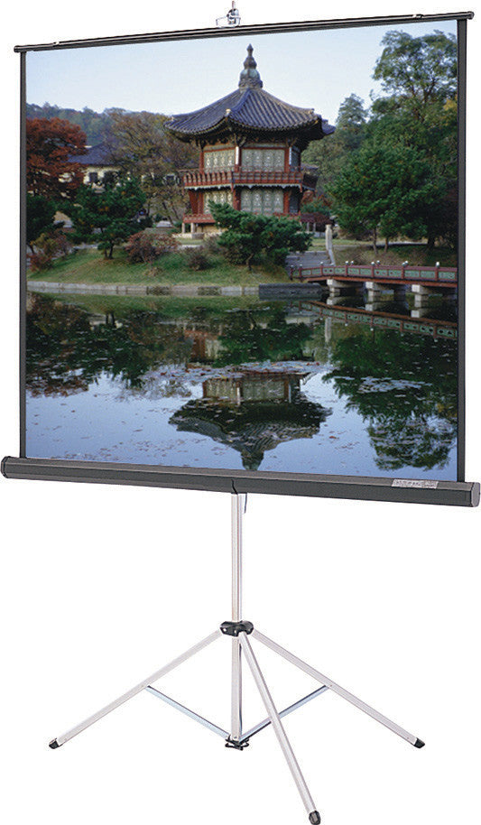 Da-Lite 93876 Picture King 96 x 96 Inch Tripod Screen Matte White