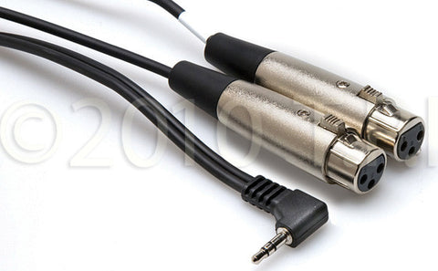Hosa CYX-402F Dual XLR3F to Right-angle 3.5 mm TRS 2FT