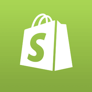 Shopify Ecommerce Store Set-up