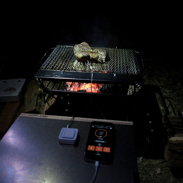 CAMPING FOOD | Internal Meat Temperatures