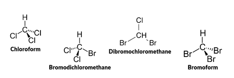 Chemical Structures of Trihalomethane disinfection byproducts