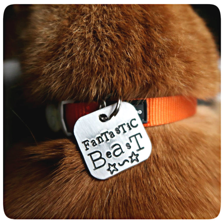 Fantastic Beast Personalized Pet Id Dog Cat Tag