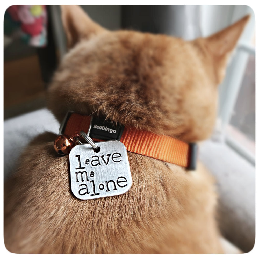 Funny Personalized Pet ID Tag Cat Dog Grumpy