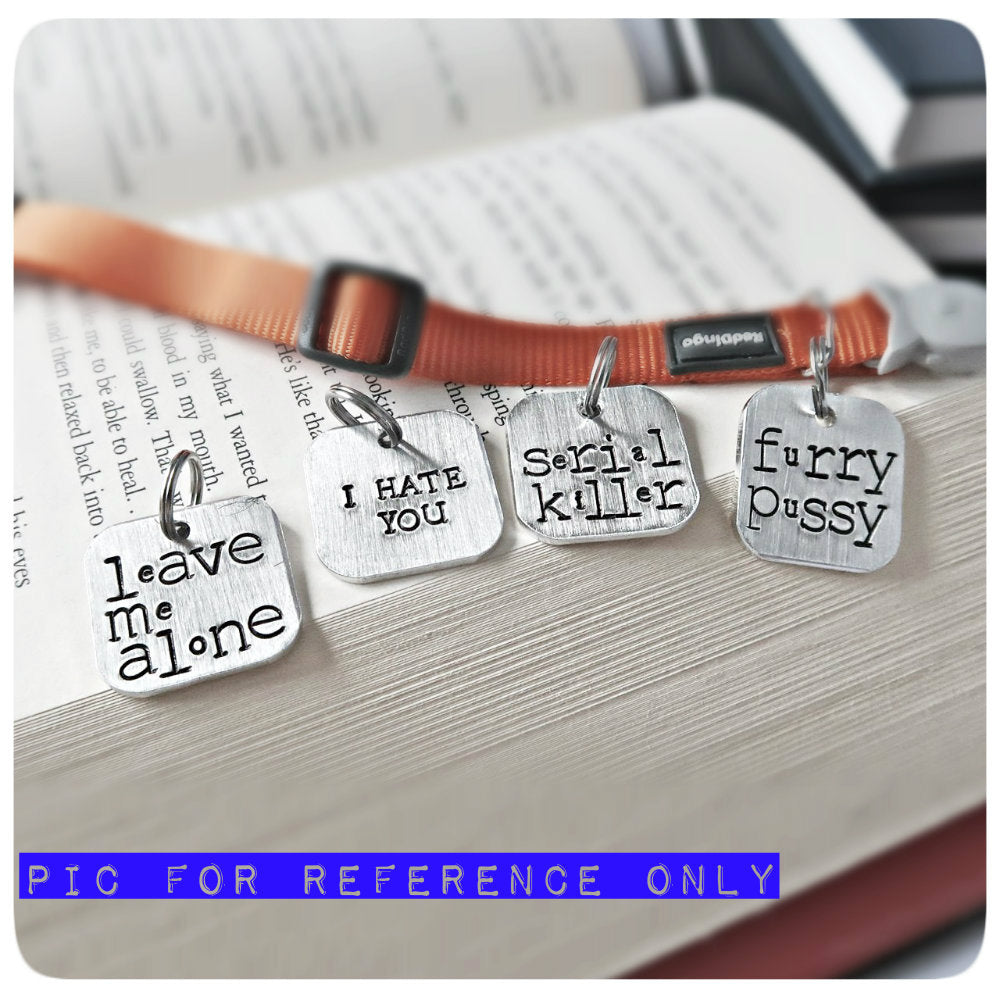 Funny Personalized Pet Id Tag for Cat Dog