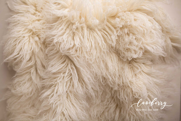 WINTER WHITE Premium Wool Flokati (Savage match)