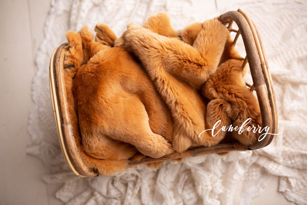 Camel Rabbit Fur