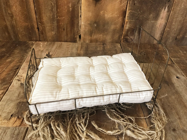 Metal Bed with Cushion