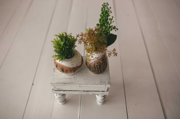 Cream Little Planters Set