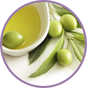 Concentrated Olive Fruit Extracts