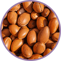 Moroccan Argan Oil for hair