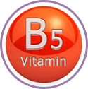 Vitamins-B5 for Wow Skin Science Coconut Milk & Argan Oil Body Lotion