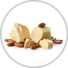 Cocoa Butter - Ingredient of wow skin science Vitamin C Face Cream