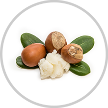 Shea Butter - ingredient of wow skin science Vitamin C Face Cream