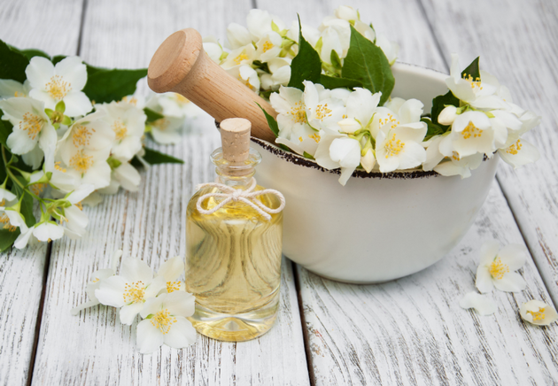 Jasmine Essential Oil: Benefits And Uses