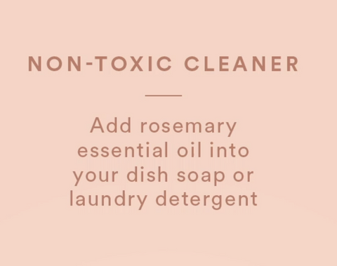 non toxic cleaner rosemary essential oil