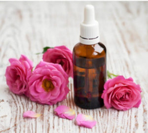 Illuminating Ageless Rosehip Cleansing Oil 1 oz - The Chirping Cat Apothecary