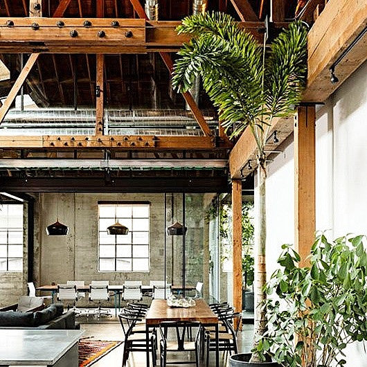 NW/91DD used on exposed beams to give a real authentic look.