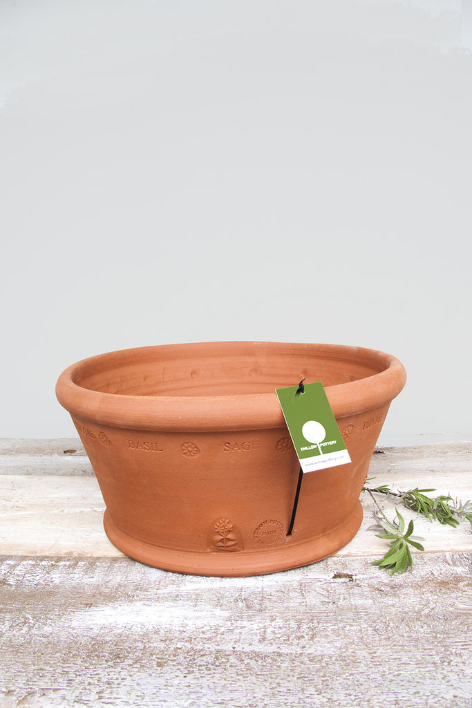 Terracotta Terrace Herb Pot