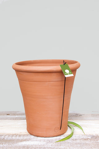 Classic Tall Terracotta Pot