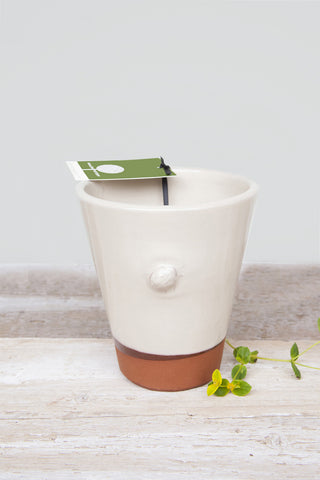 Small Glazed Plant Pot