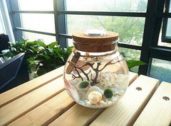 Home Aquarium Kit - TopTier Shop Unique Fun Trending Gifts Hot Items Shopping Home