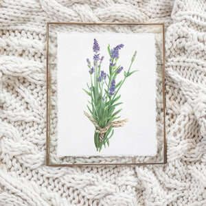 Lavender Watercolor Print