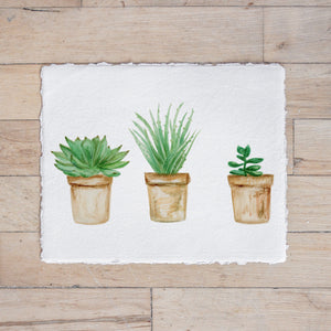 Succulent Pots Watercolor Print
