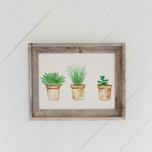 Succulent Pots Watercolor Barn Wood Framed Print