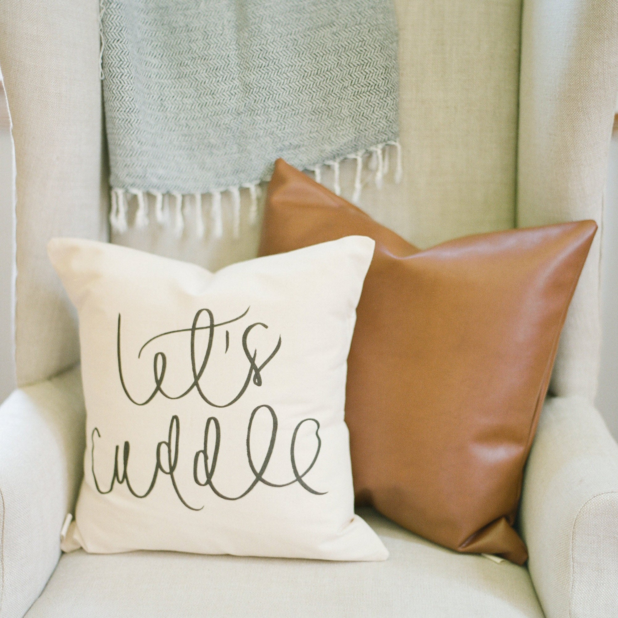 Faux Leather Accent Pillow