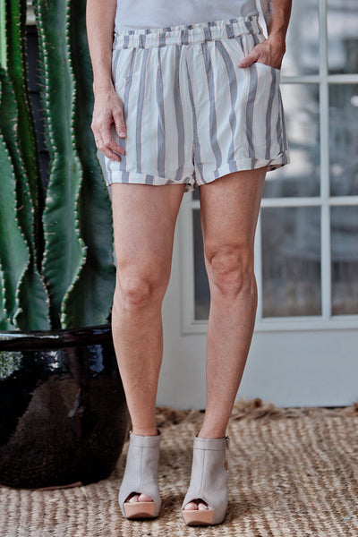 Dover Shorts - Dragonfly Playa Stripe