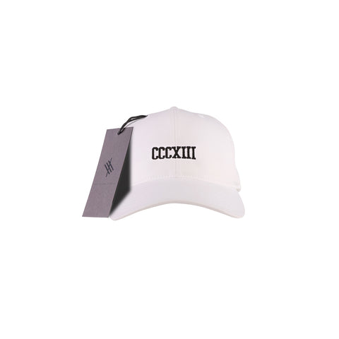 THREE 313 PATCH 3D Trucker White Mesh Snapback