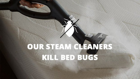 Our Steam Cleaners Kill Bed Bugs