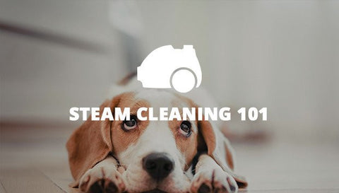 Steam Cleaning 101