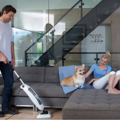 ELIMINATING PET ODOURS AND RESIDUES FROM YOUR HOME