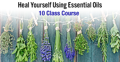 Heal Yourself Using Essential Oils - (10 Lesson Course) KG Stiles, Instructor - ON SALE 20% OFF!-Consulting & Tutorial Programs-PurePlant Essentials