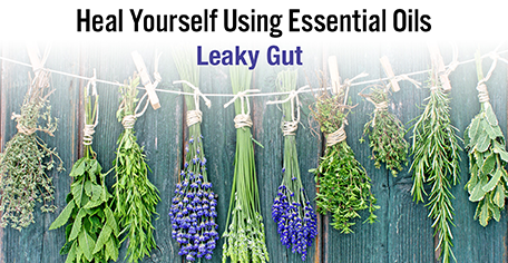 Heal Yourself Using Essential Oils - Leaky Gut - KG Stiles, Instructor BA, CBT, CBP, LMT - SAVE 20% OFF!-Consulting & Tutorial Programs-PurePlant Essentials