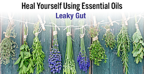 Heal Yourself Using Essential Oils - Leaky Gut-Consulting & Tutorial Programs-PurePlant Essentials