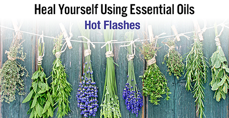 Heal Yourself Using Essential Oils - Hot Flashes-Consulting & Tutorial Programs-PurePlant Essentials