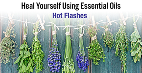 Heal Yourself Using Essential Oils - Hot Flashes - ON SALE!-Consulting & Tutorial Programs-PurePlant Essentials