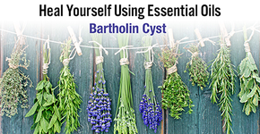 Heal Yourself Using Essential Oils - Bartholin Cyst - ON SALE!-Consulting & Tutorial Programs-PurePlant Essentials
