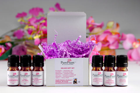 Essential Oils Deluxe Gift Set - Lavender, Peppermint, Eucalyptus, Tea Tree - Vetiver, 10% Rose Geranium - (BUY 6 OIL BUNDLE & SAVE)-Essential Oil Kit-PurePlant Essentials