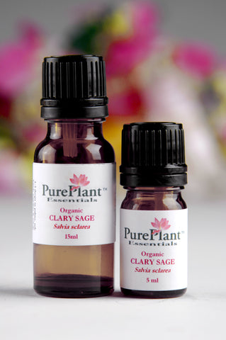 Clary Sage, Salvia Sclarea -- Hydrodiffused Flowers, USA-Single Pure Essential Oil-PurePlant Essentials